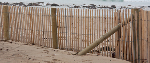 Beachmaster Sand Fence