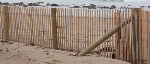 Beachmaster Sand Fence
